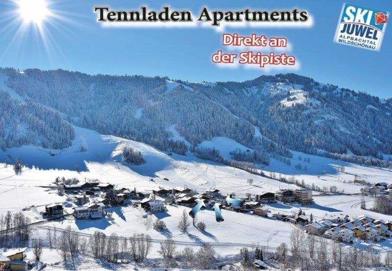direct-to-the-skipiste-live-apartment-hotel-holiday-apartment-skiwelt-wilder-kaiser-brixental-hopfgarten-deep snow-snowboarding-natural-alps-austria-skiing-sciare-vacanza-wildschoenau-skiing-downhill