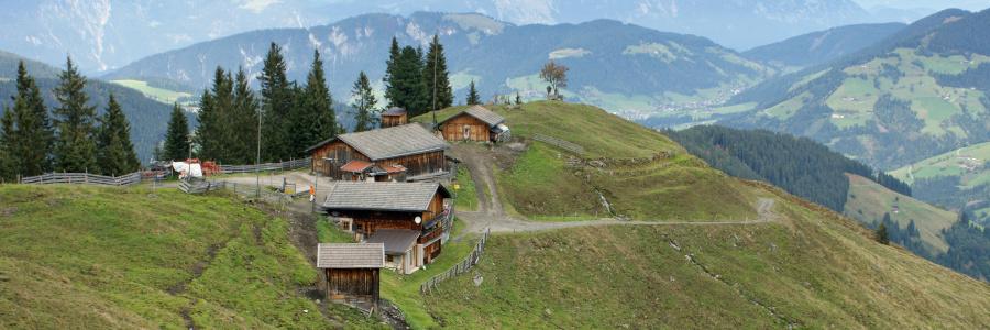 Alm-laempersberg Wildschoenau-cauta-în-Inntal Almen-de-a-face-the-Alm-Tirol
