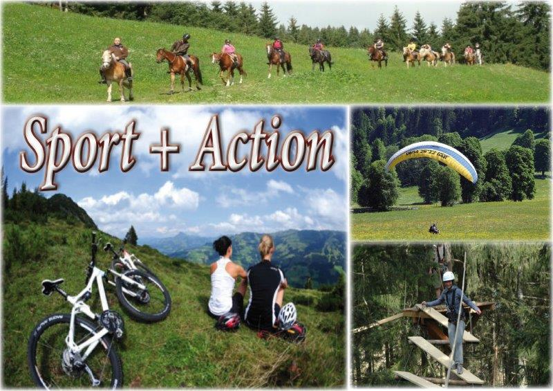 holidays-summer-wildschoenau-mountainbike-hiking-walking-mountains-alps-hochseilgarten