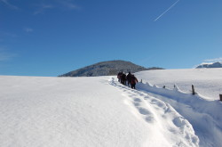 schneeschuhwanderung-wildschoenau-tourismusverband-organisierte-wanderung-schnee-schneeschuhe-verleih-sportartikel