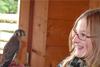 raptor-vaikams mokytis-gyvūnai-Know-vaikai-šou zoologijos sodas paukštis Rodyti