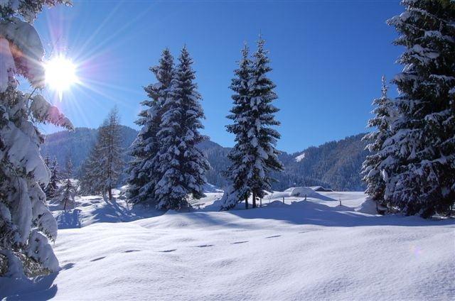 winterlandschaft-verschneite-landschaft-winter-in-den-bergen-tirol-tyrol-alpenidylle-sonnenschein-am-berg